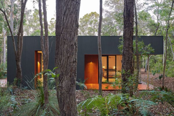 featured posts image for Compact pavilion house surrounded by dense Australian bushland