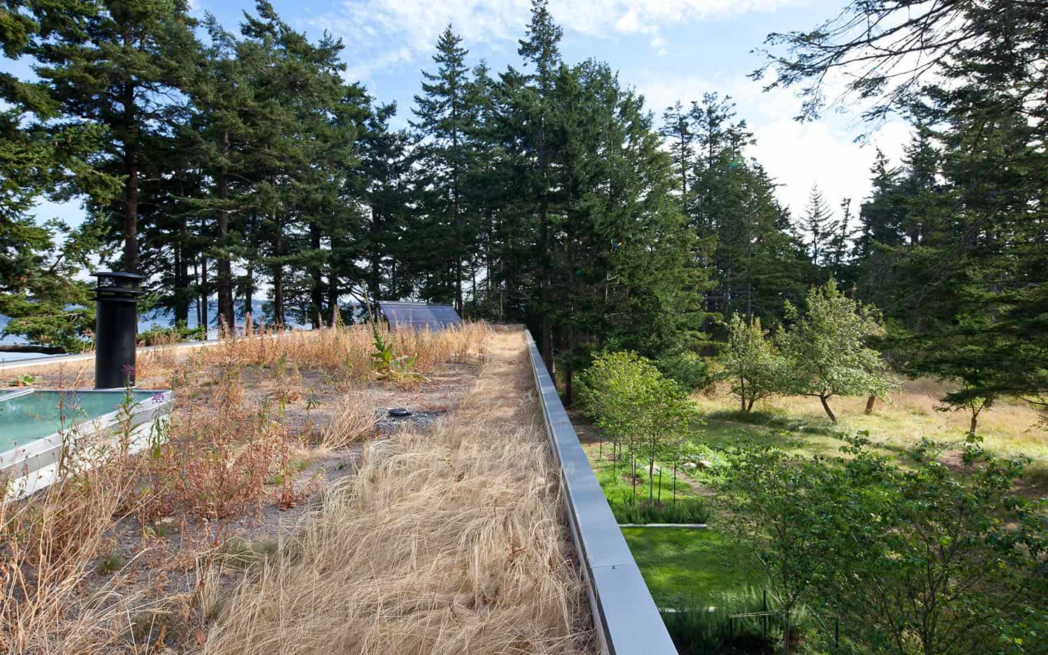 contemporary-green-roof