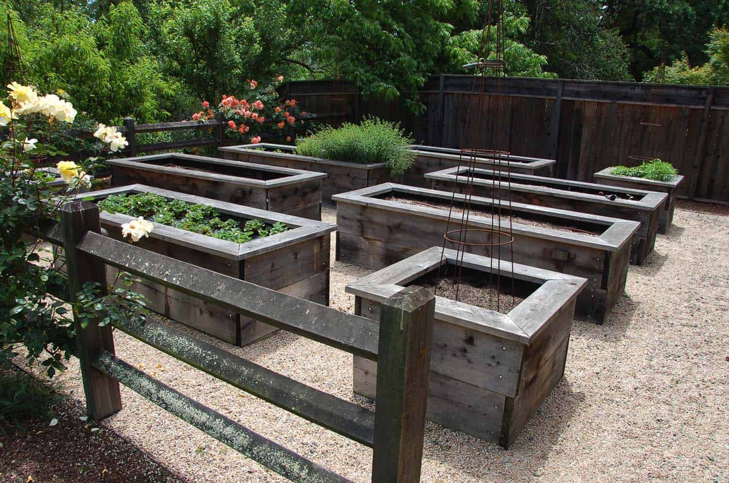 raised-bed-vegetable-garden-ideas