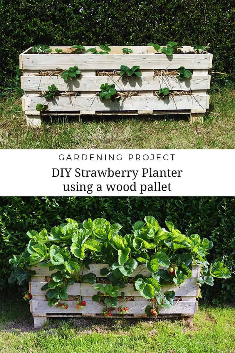 11 Spectacular Recycled Wood Pallet Garden Ideas To DIY