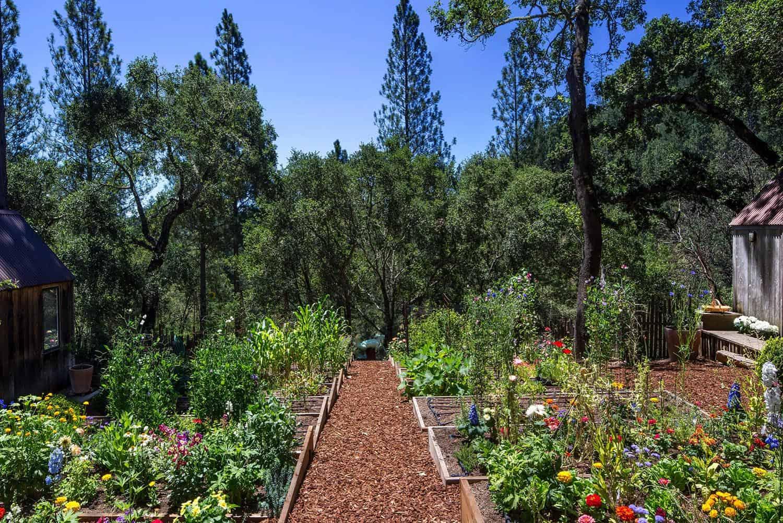 barn-style-cabin-garden