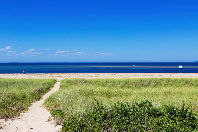 beach-style-home-landscape