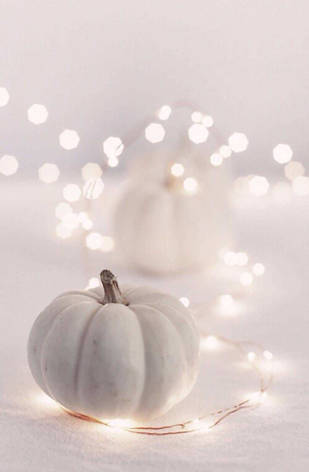 white-pumpkins-with-twinkle-lights