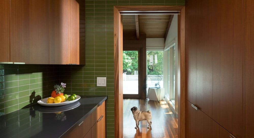 mid-century-butlers-pantry