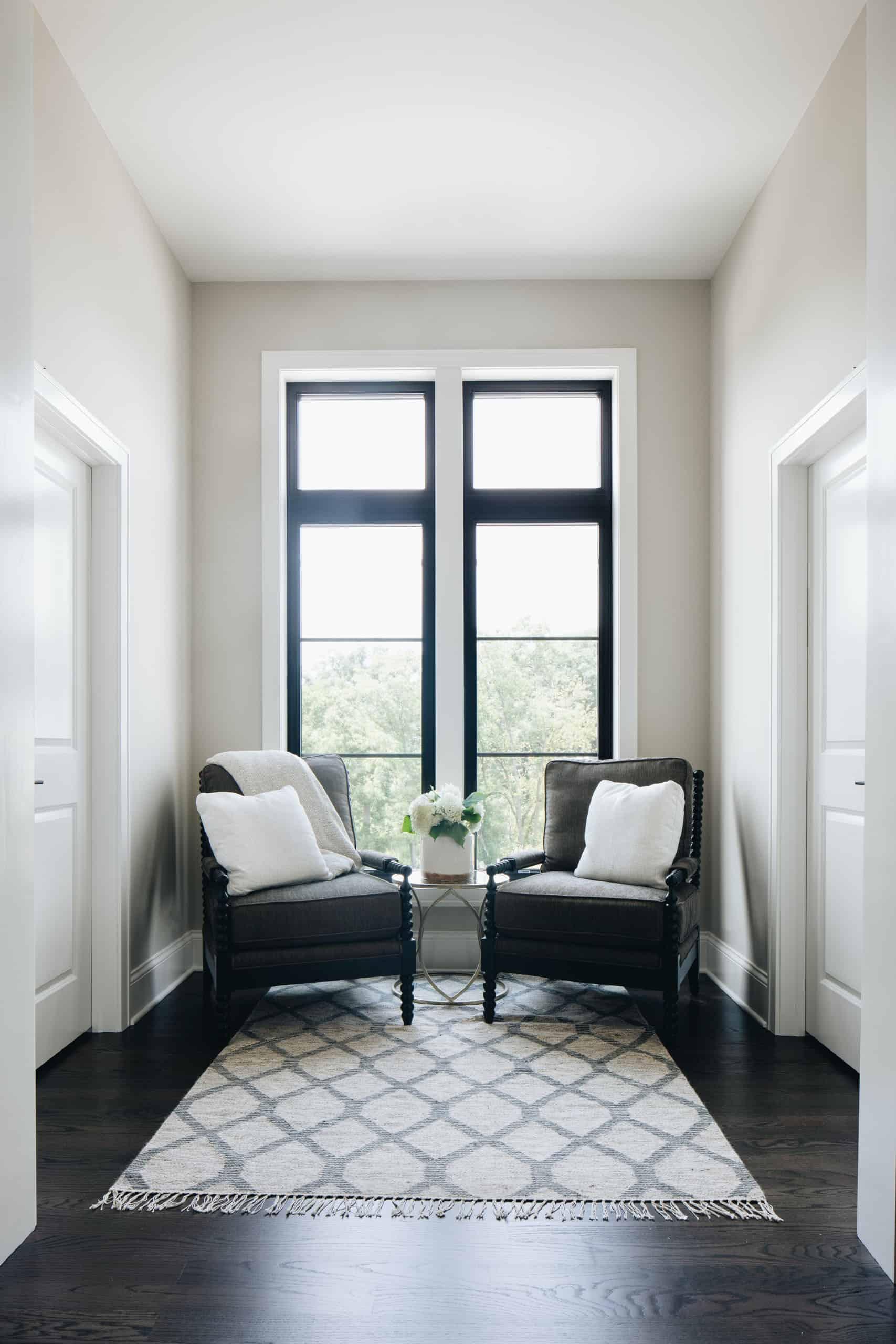 transitional-lounge-area-closet