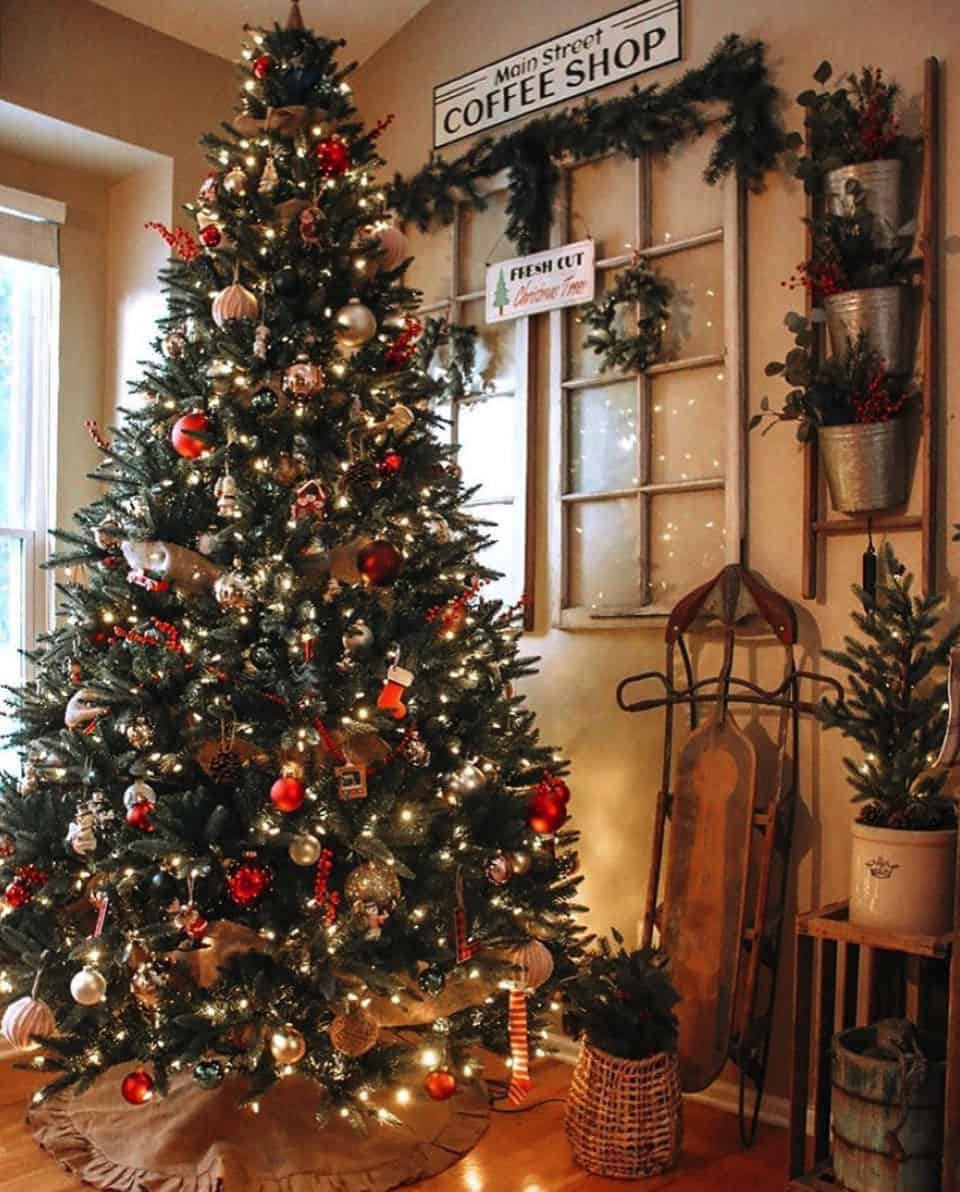 stunning-christmas-trees
