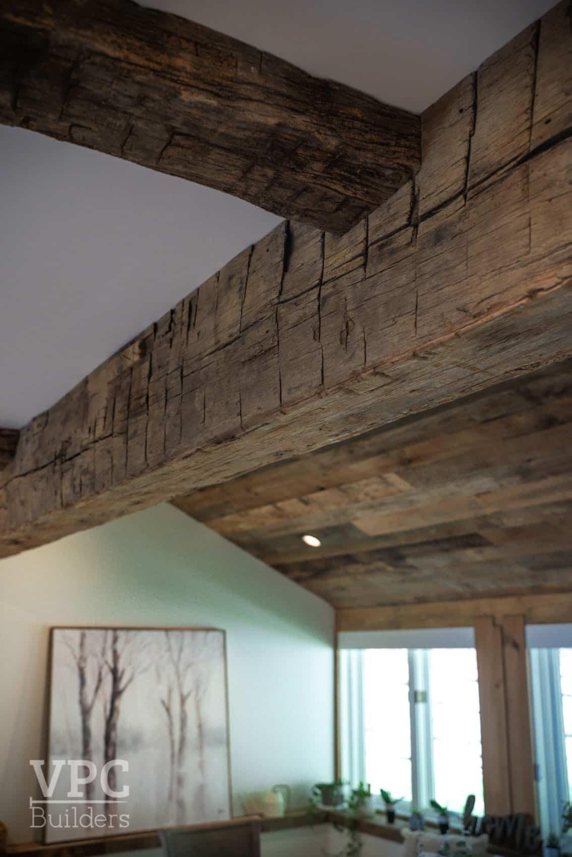 mountain-modern-ceiling