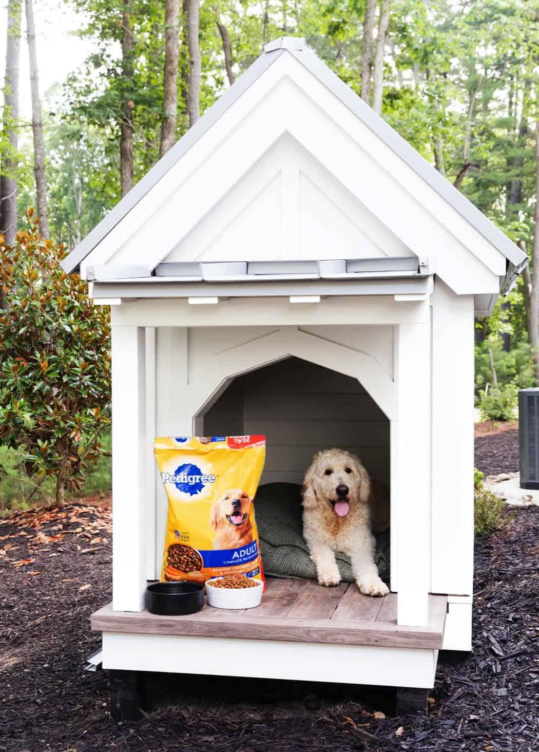 seoska kuća-pasja kućica
