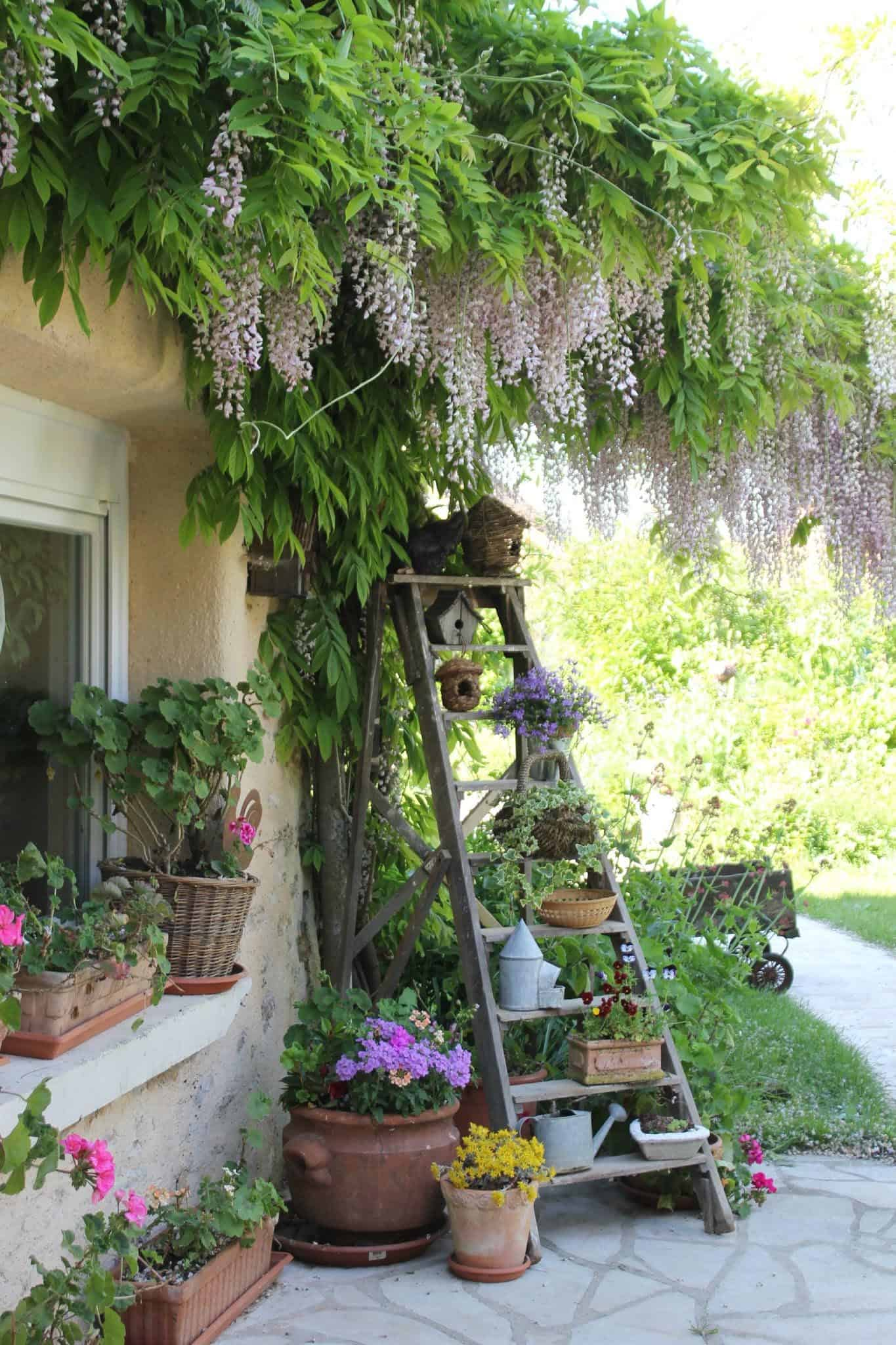 terrace-with-spring-vibes-plant-ladder