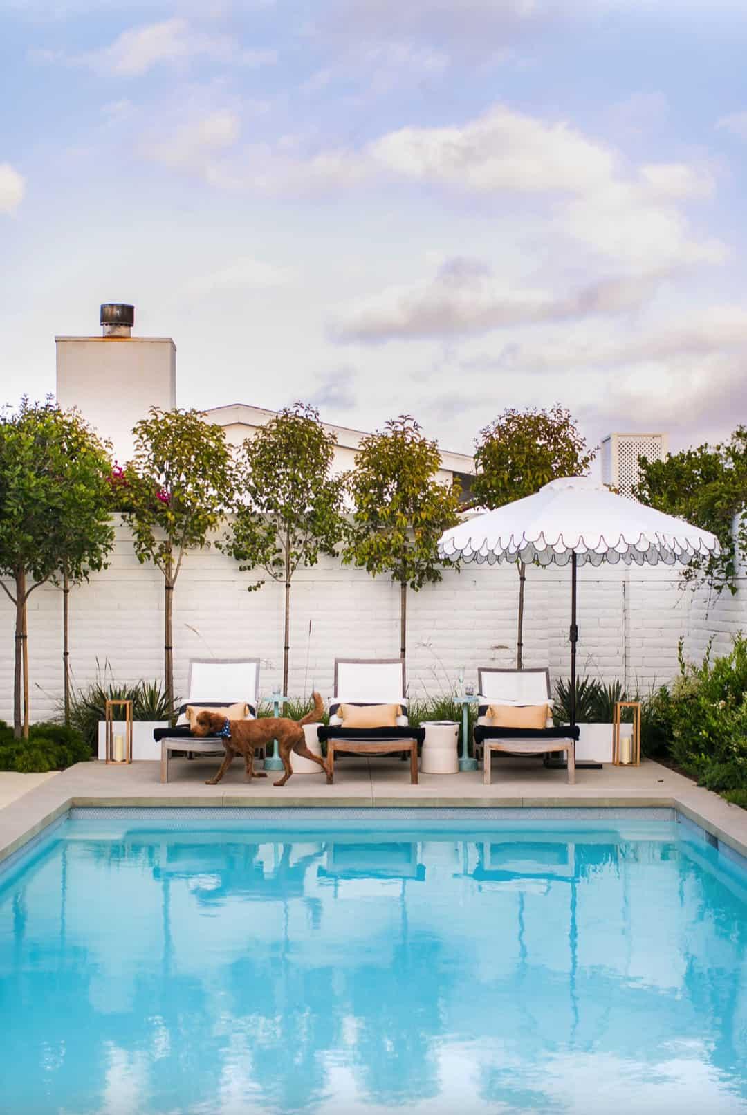 modern-coastal-dream-home-pool