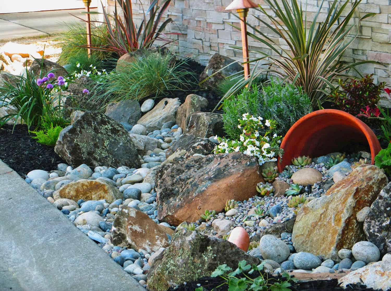 rock-plant-scape
