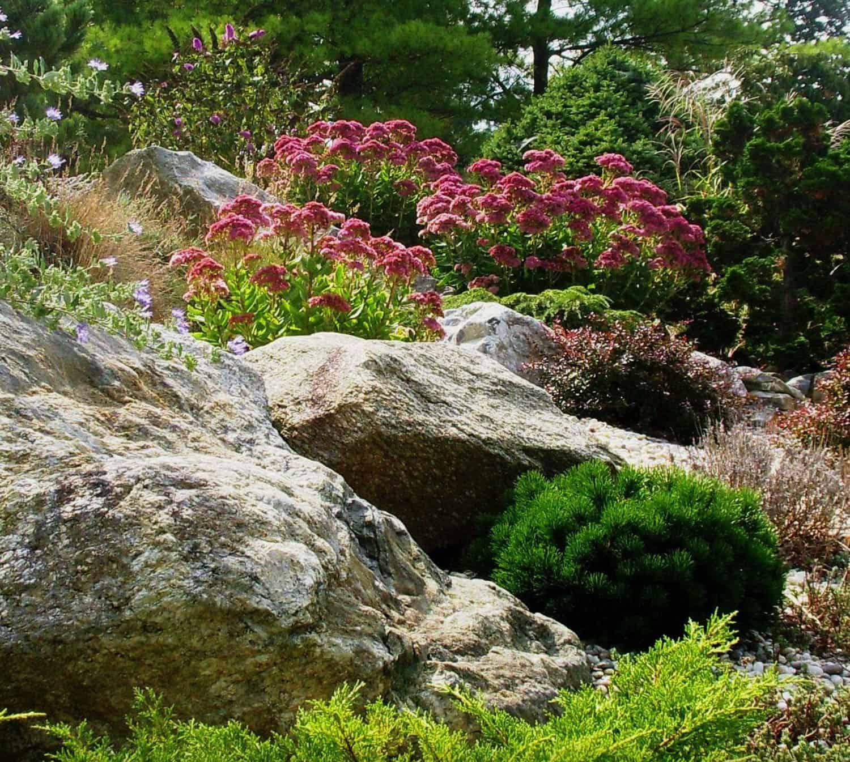 rock-garden-river-bed