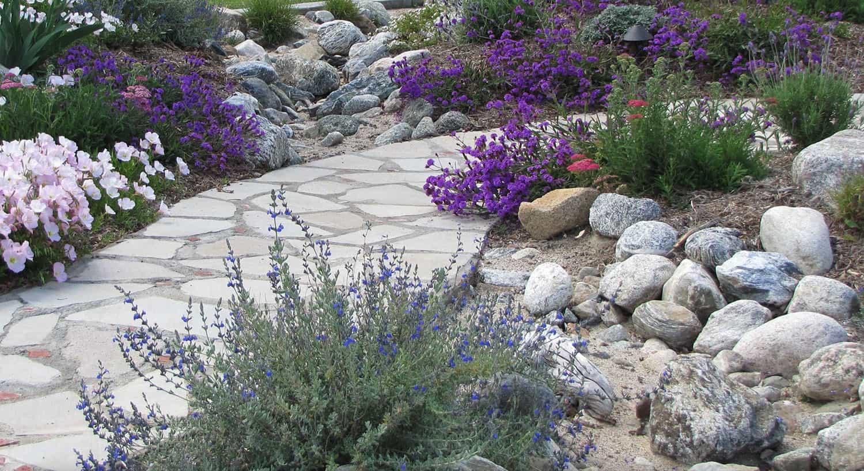 vibrant-rock-garden