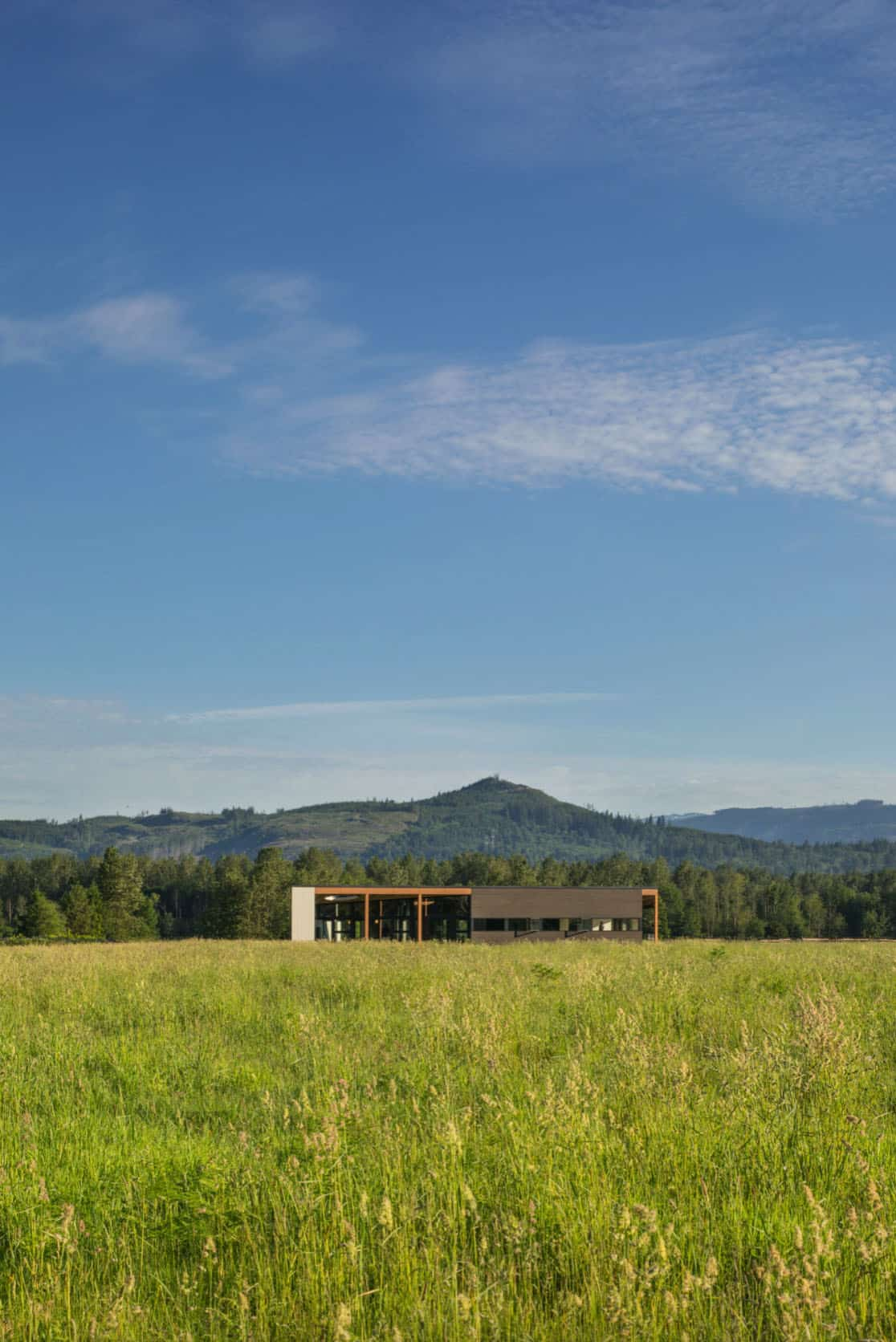 midcentury-house-exterior-setting