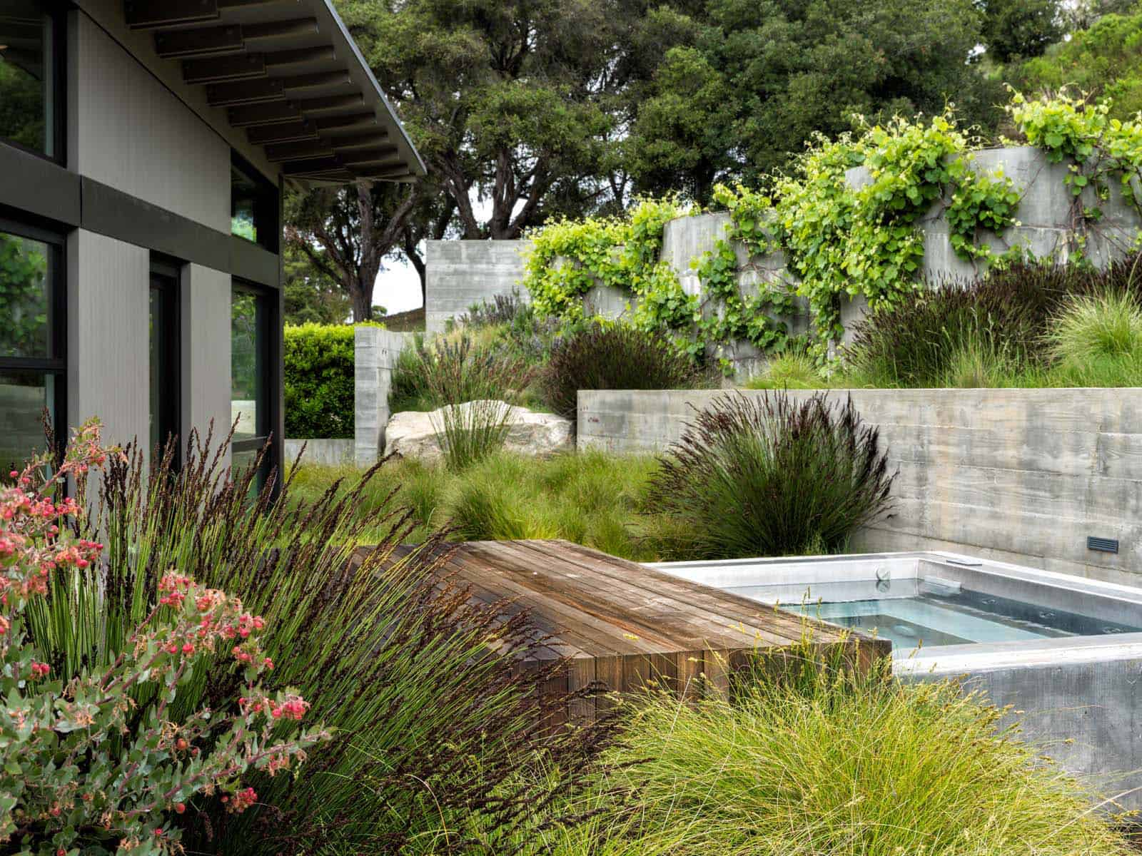 contemporary-plunge-pool