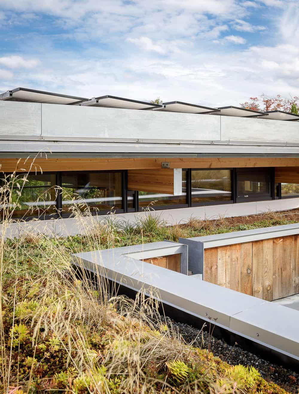 suvremeni-dom-zeleni-krov