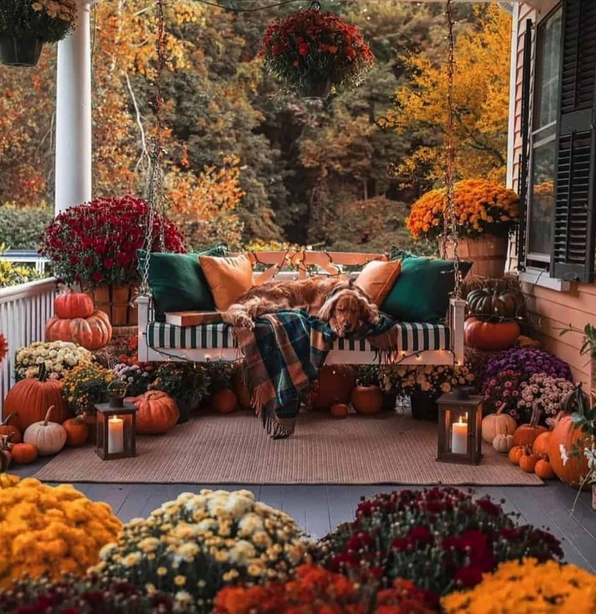 fall-porch-decorating-ideas-with-pumpkins-mums-and-swing