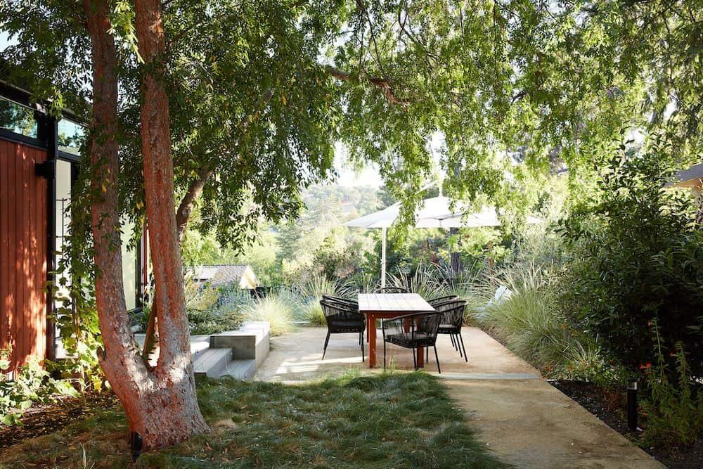 midcentury-modern-home-backyard-california