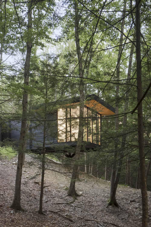 modern-forest-home-exterior