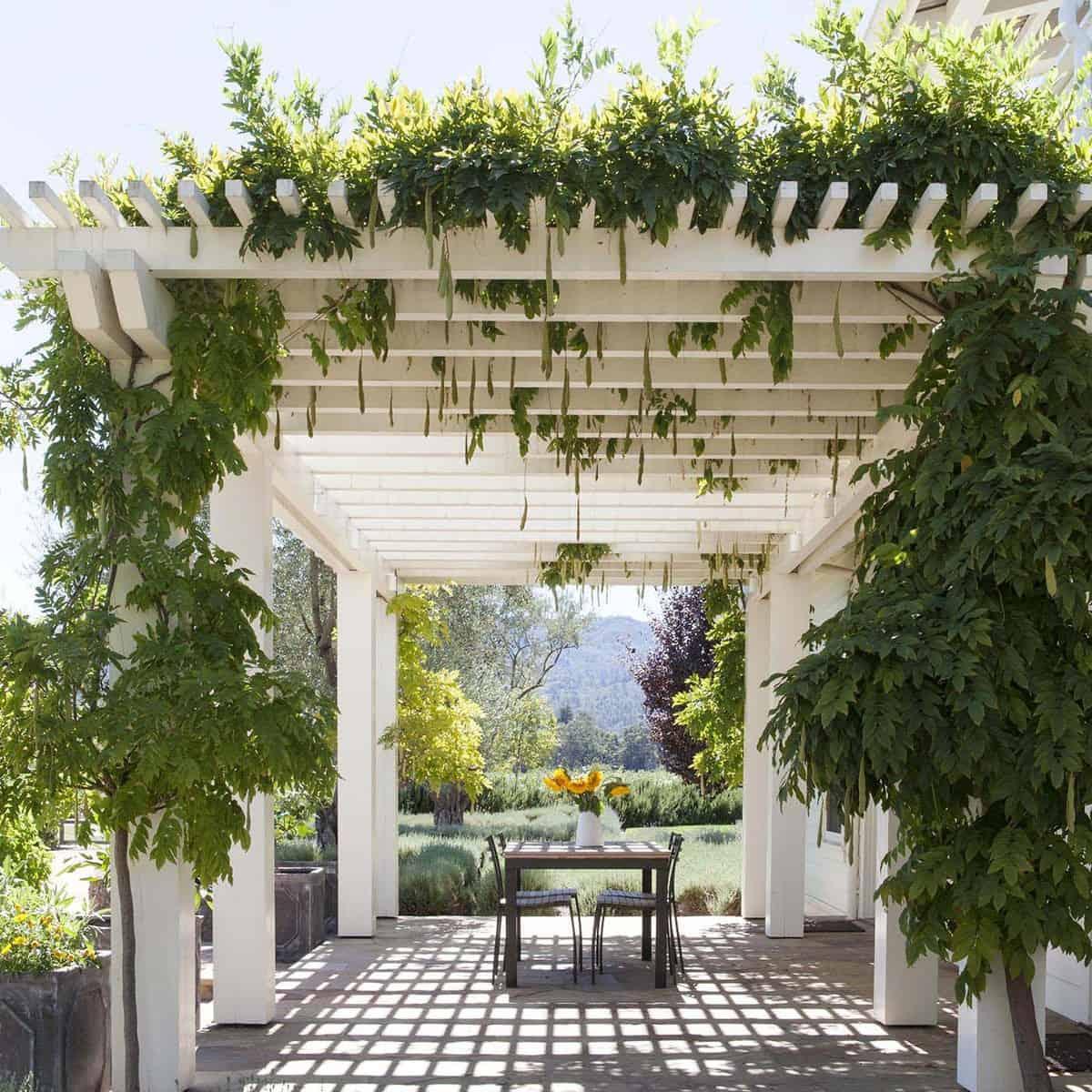 farmhouse-style-vineyard-home-trellis-patio