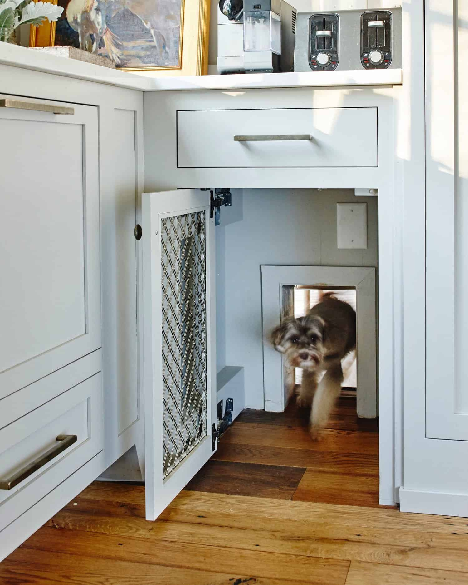 transitional-style-kitchen-with-dog-door