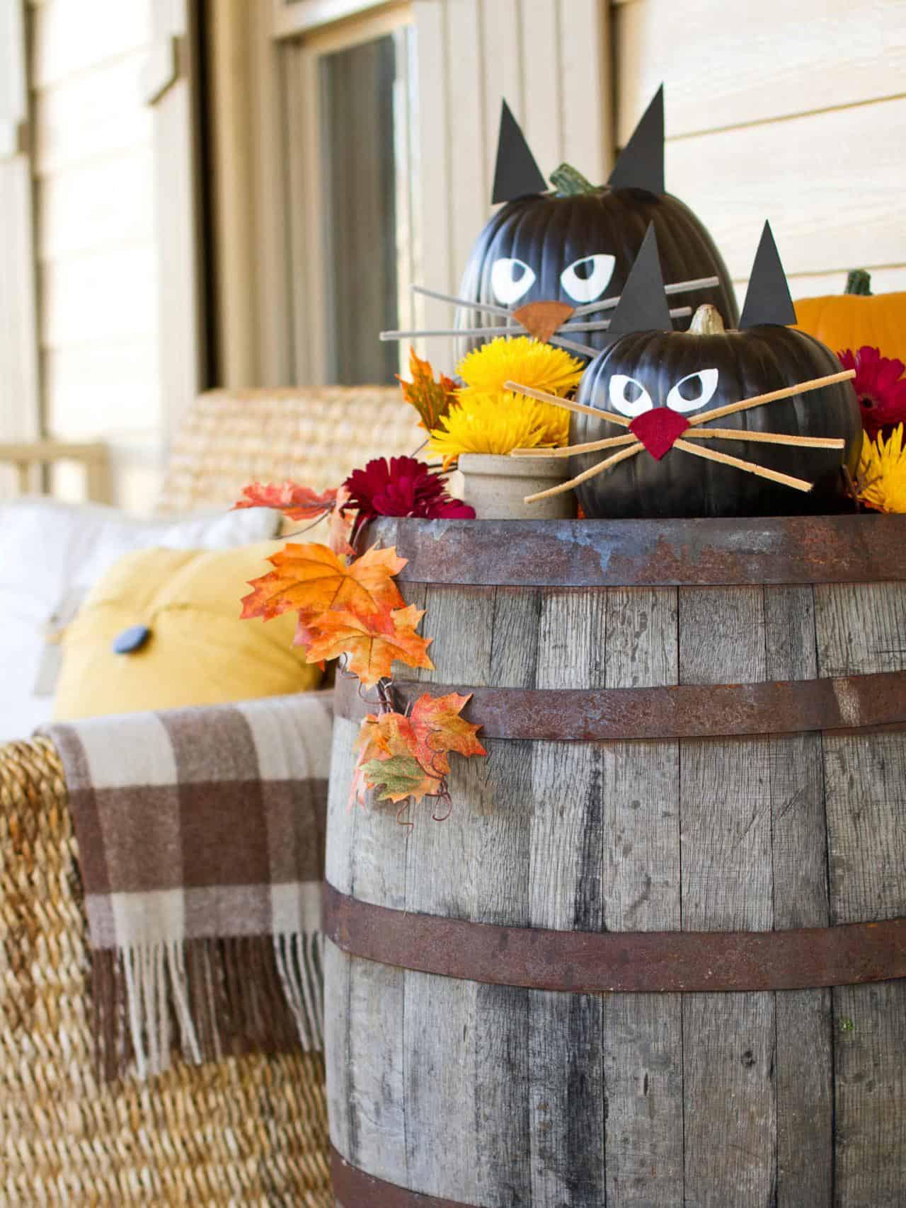 diy-black-cat-pumpkins